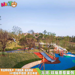 Outdoor large-scale personalized non-standard amusement equipment Customized combination slide Children's playground equipment LT-JG001